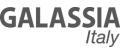 Логотип Galassia