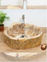 Natural Stone Flores Накладная раковина-чаша из окаменелого дерева