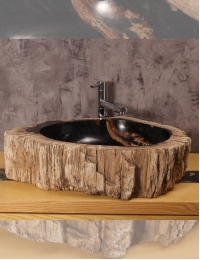 Natural Stone Dark Core A Накладная раковина-чаша из окаменелого дерева