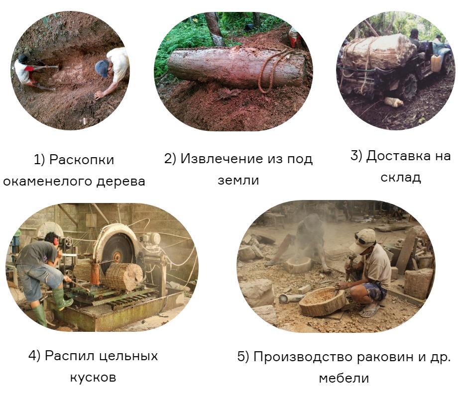 Процесс добывания и производства раковин из окаменелого дерева
