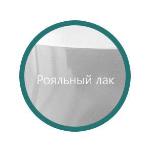 Пример ванны Salini (Салини) в исполнение Рояльный лак (глянцевая поверхность)