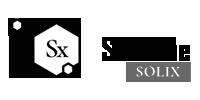 Salini Solix